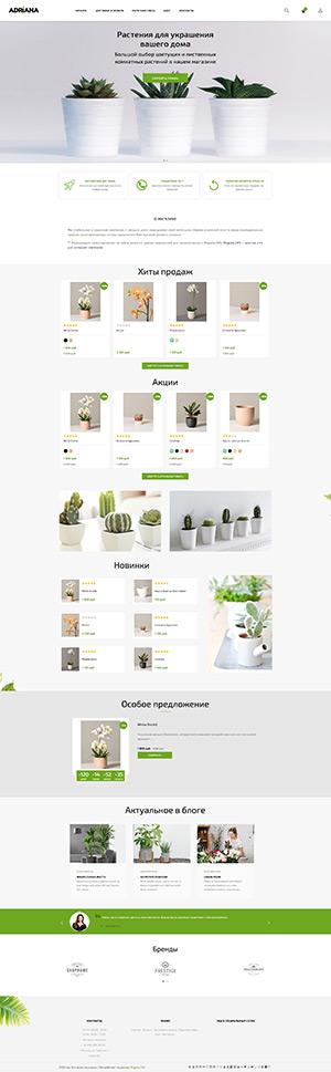 Шаблоны для Платформа для интернет-магазина - Adriana
