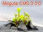 Moguta.CMS 3.3.0 - простая cms для интернет магазина