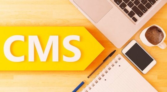 Какую CMS выбрать для интернет-магазина